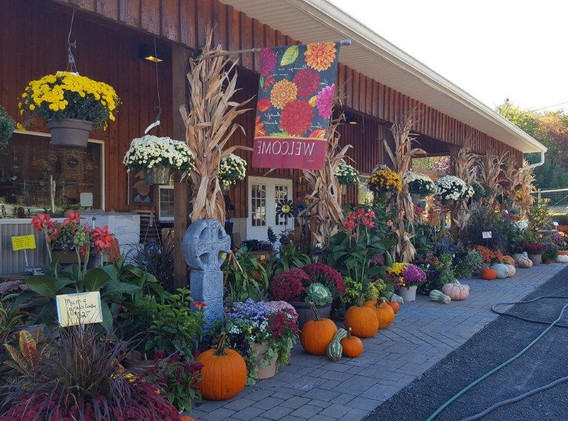 fall front of store (2).jpg