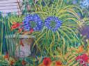 27.  Agapanthus, Nasturshams and Geraniums   40 x 54 cms.JPG