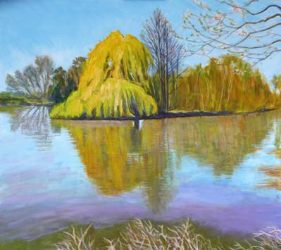 David Shutt (b.1945) 'Thames at Cliveden Reach' oil on panel, 90 x 102cm