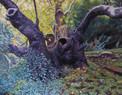 12.  Large Bole of a Plane Tree                  145 x 185 cms.JPG