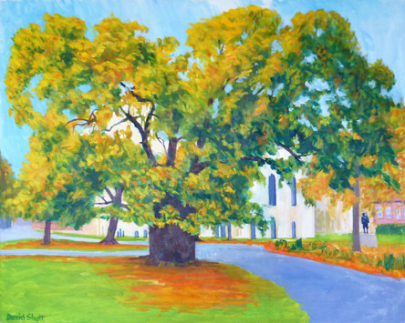 David Shutt (b.1945) 'Plane Tree and Canterbury Cathedral' oil on canvas, 80 x 100cm