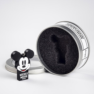 Mickey disk on key