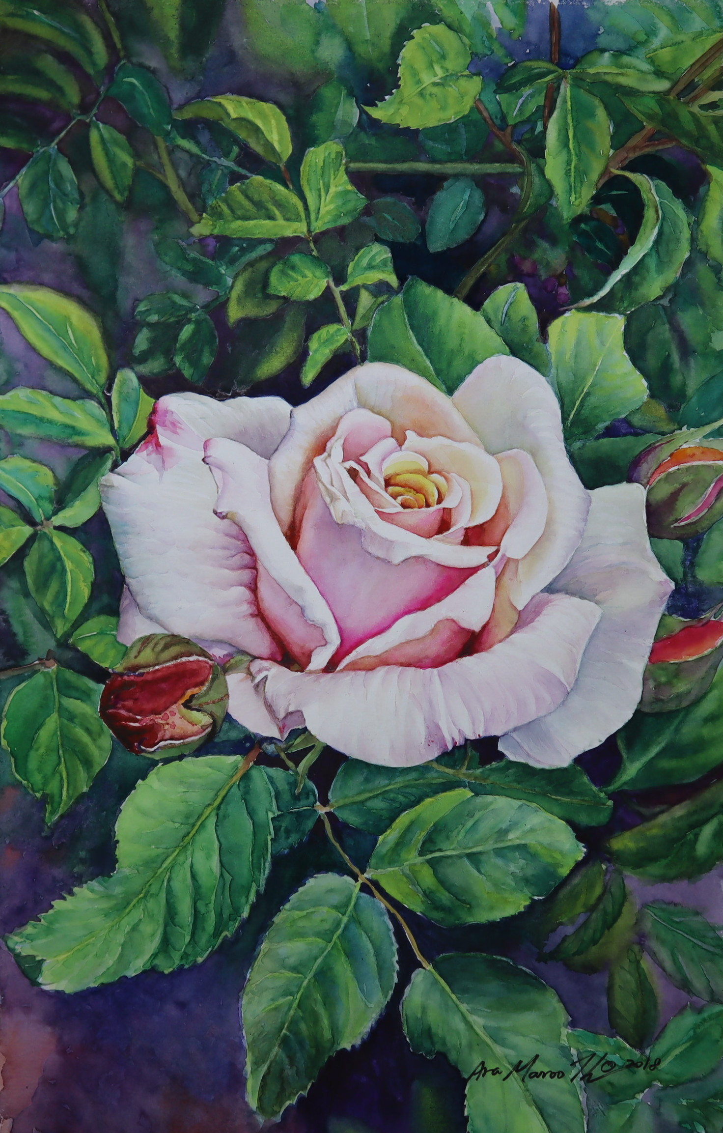 The Rose #3