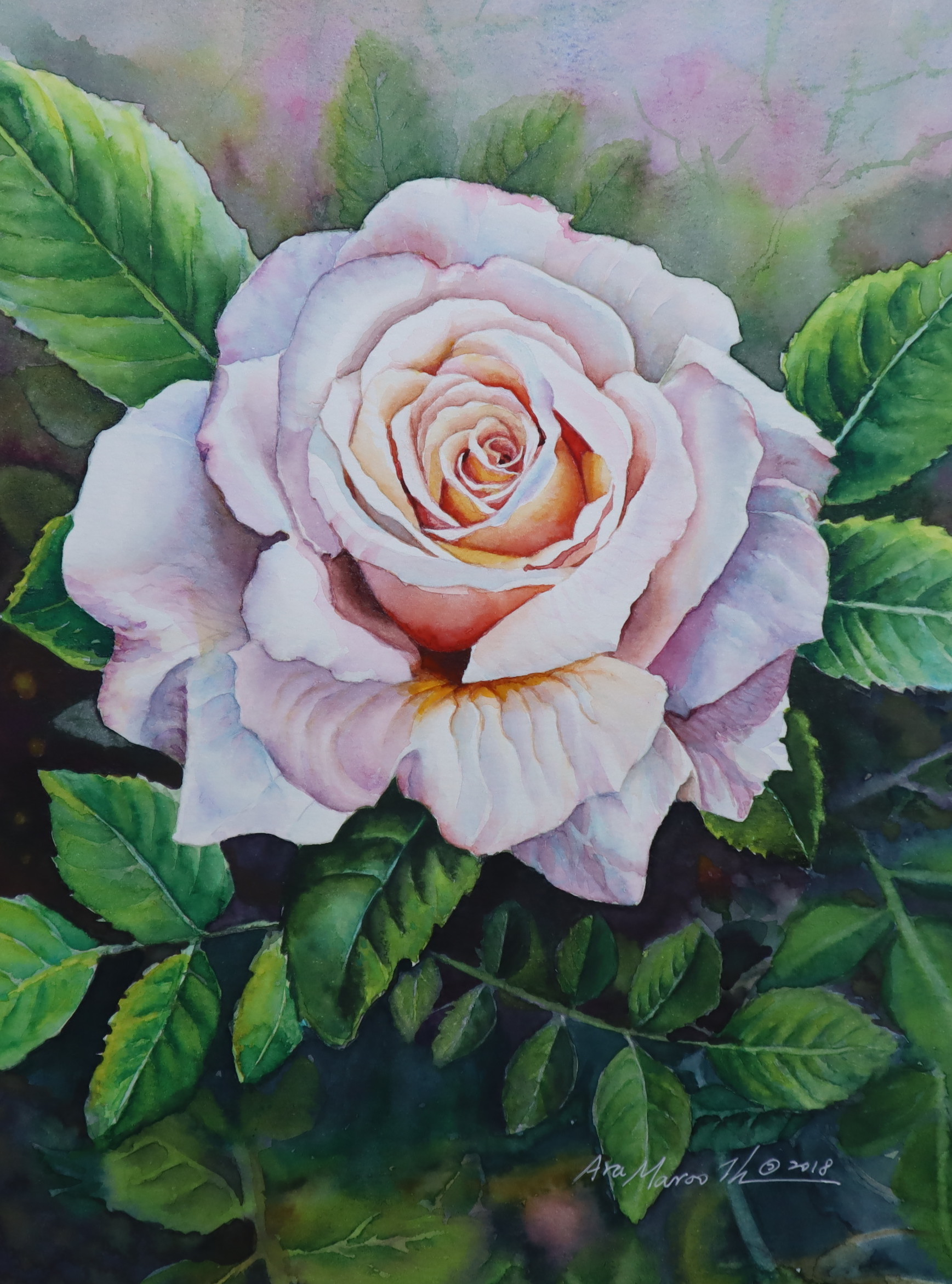 The Rose#1