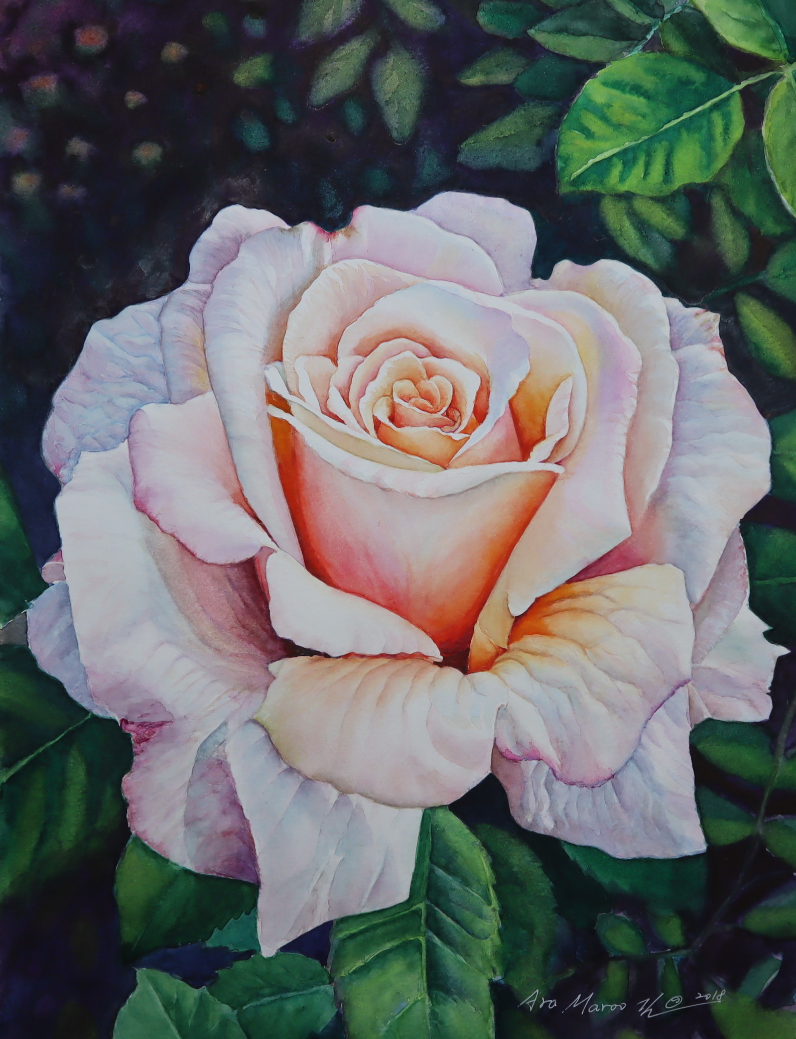 The Rose #2