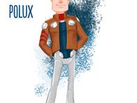 Polux_Concept copy.png