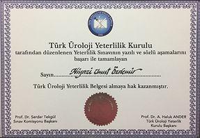 Türk Üroloji Yeterlilik Kurulu