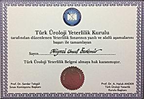 Türk üroloji Yeterlilik Kurulu Sertifikası