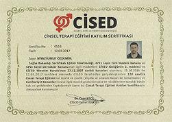 cised sertifikası