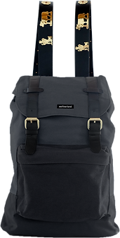 Backpack_front.png