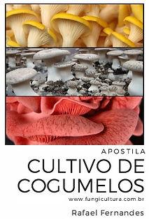 Apostila cultivo de cogumelos