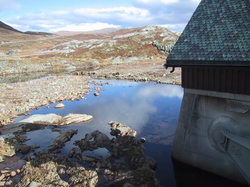 Polacy w Norwegii, czyli zderzenie cywilizacji