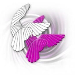 Doves-250-pixels-240x240-pink.jpg