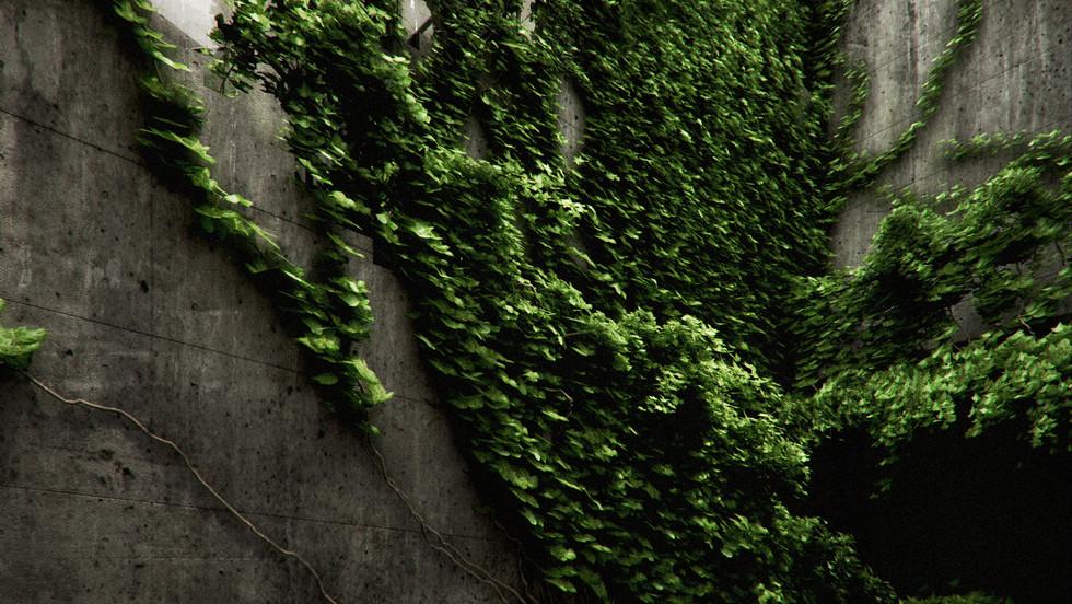 000a-Tando-ConcreteIvy0000 copy.jpg