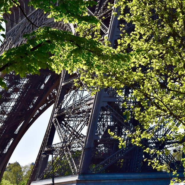 Paris, France (Eiffel Tower)