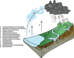 Runoff Technical Illustration