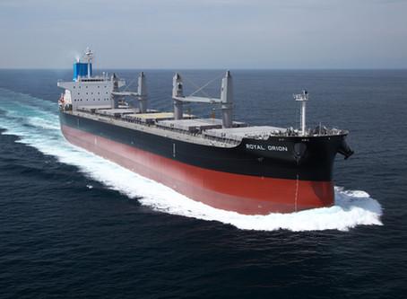 MV. Royal Orion 竣工