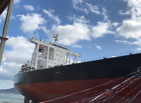 MV. Royal Argo 竣工