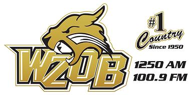 79056 WZOB Car Magnet_Football Logo.png