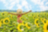 sunflowers-3640938_640.jpg