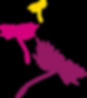 01 pusteblume-neu-3-farbig-vekto.png