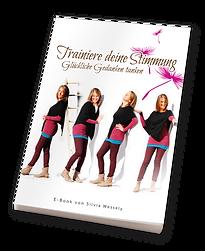 sw_e-book-stimmung.png