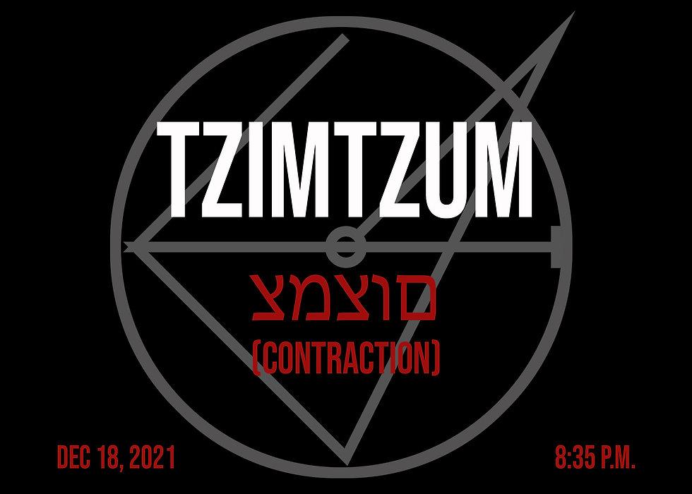 cryptochaotica_0003_Tzimtzum.jpg