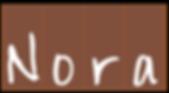 Nora Logo PNG Copy.png