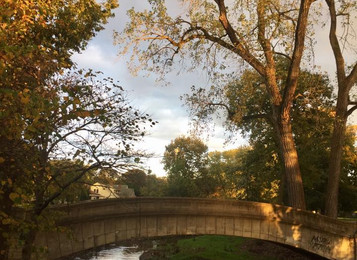 Introduction to Photography and Ecology at Spades Park
