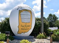 Egg 1.jpeg