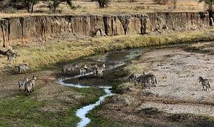 Paysage Tanzanie.jpg