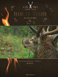 Le Cerf Pirate - BRAME EN PERIGORD_Affic