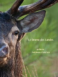 Le-Brame-des-Landes--Affiche.png