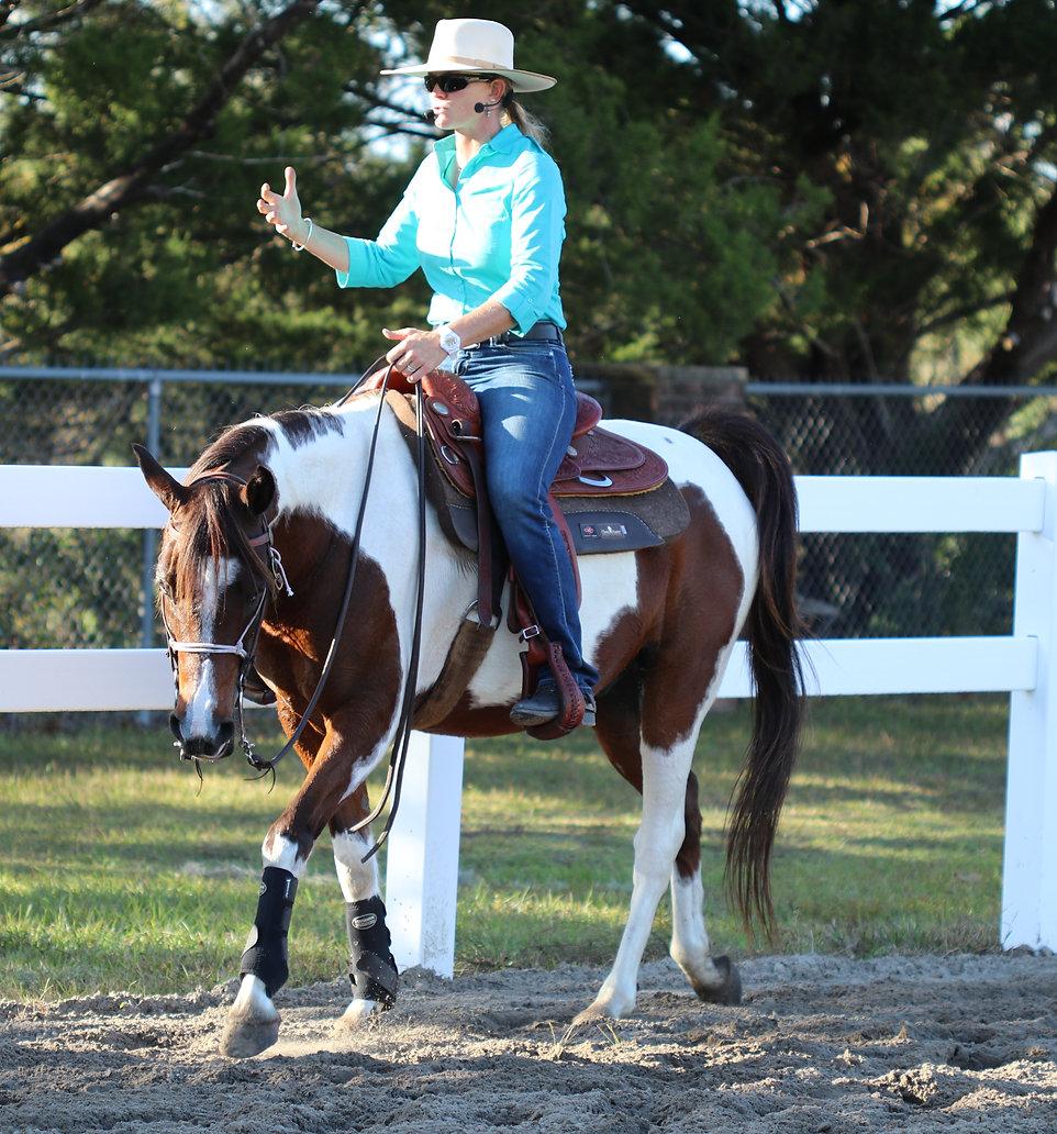 Kalley's Flexion Horse