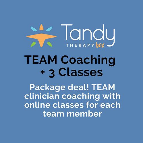 TEAM Interactive Coaching + Telepractice Classes