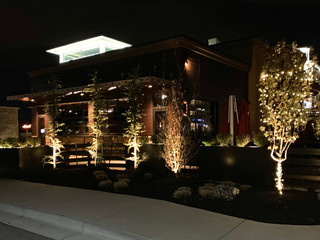 Distinctive Outdoors Commercial Lighting