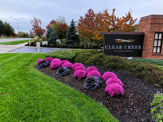 Clear Creek Seasonal Color Landscaping