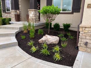residential plants.jpg