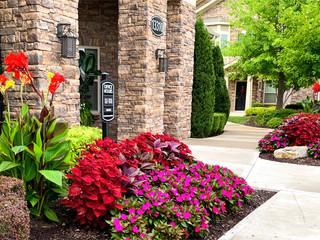Commercial Property Summer Seasonal Color