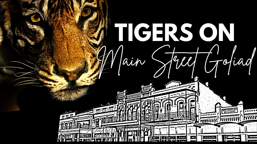 TIGERS ON Main Street.png