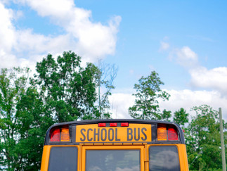 School Placement Services