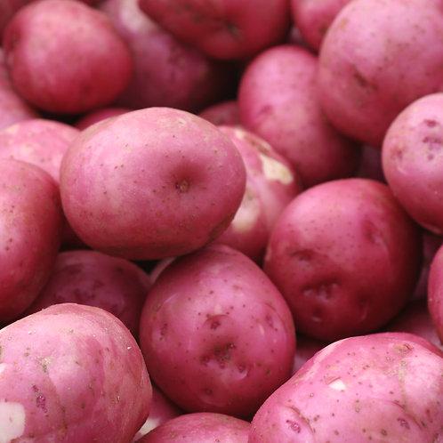 New Potatoes, 2 lbs