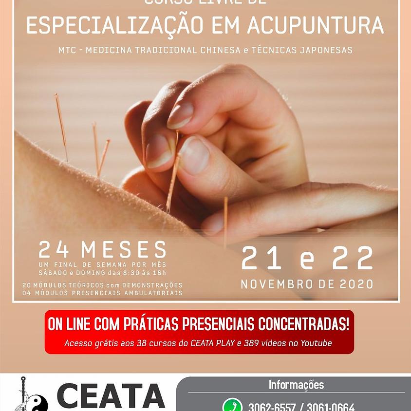 On Line : Acupuntura Curso Livre de Especialização - Com Práticas Presenciais Concentradas