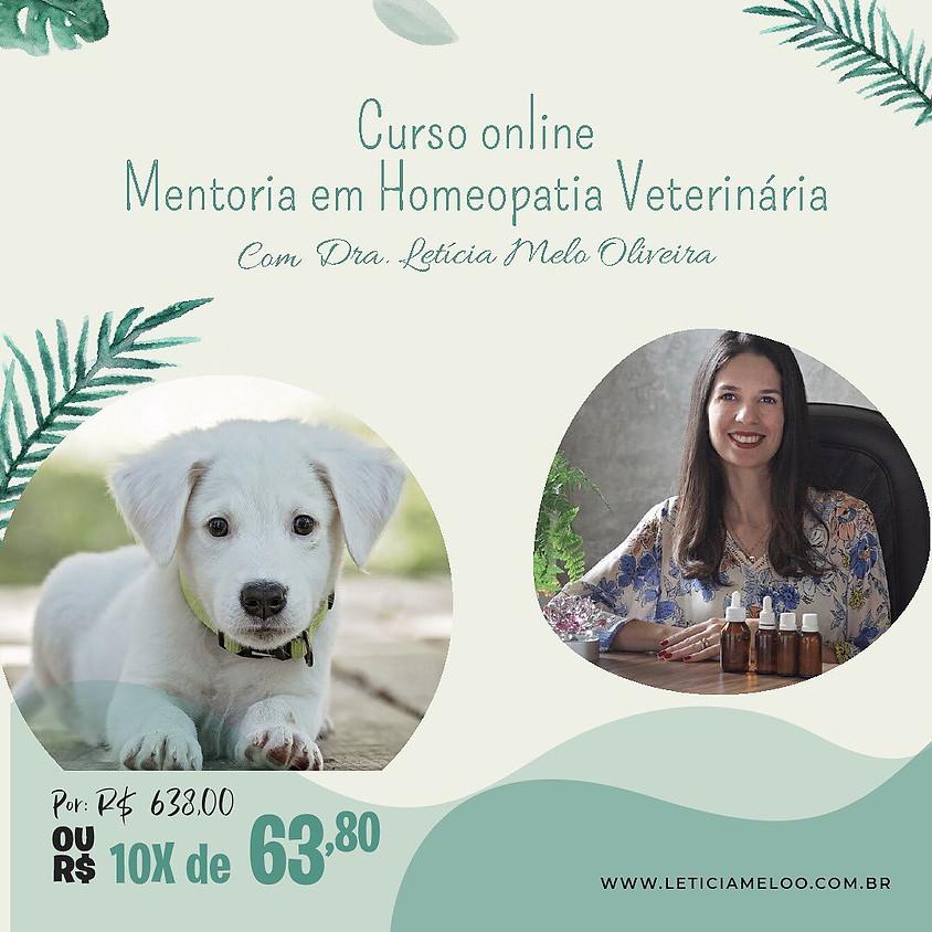 Curso Online:  Mentoria em Homeopatia Veterinária