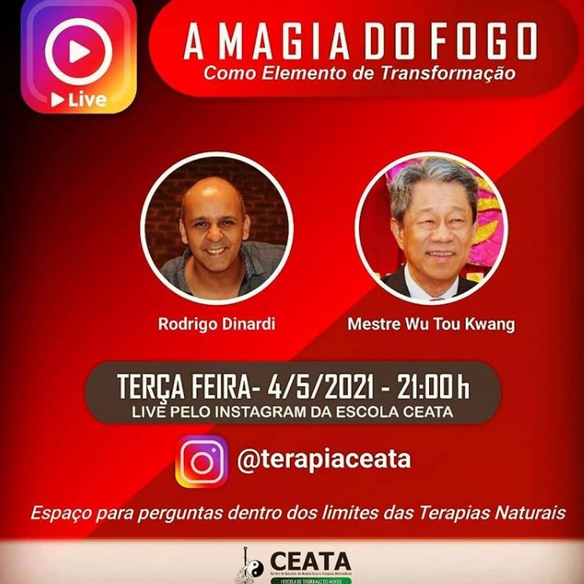 Live: A Magia do Fogo
