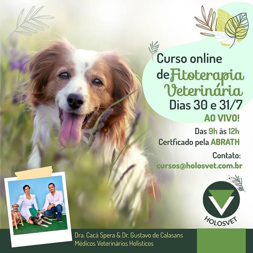 Curso Online: Fitoterapia Veterinária