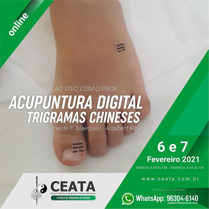 Curso Online: Acupuntura Digital - Trigramas Chineses