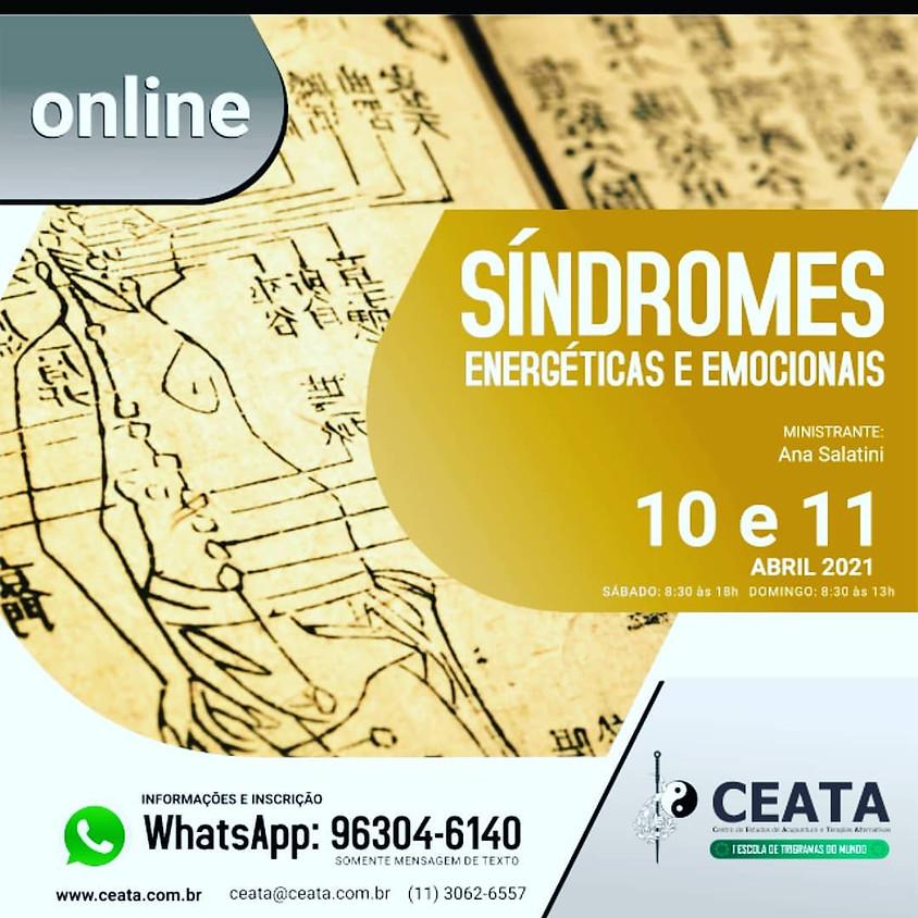 Curso Online:  Síndromes Energéticas e Emocionais
