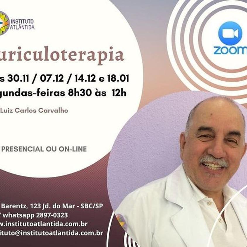 Curso: Auriculoterapia