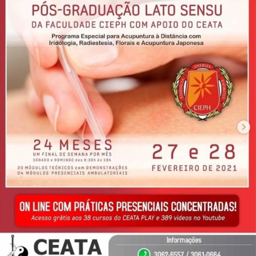 On line com praticas Presenciais: Curso de Acupuntura Pós Graduação Lato Sensu
